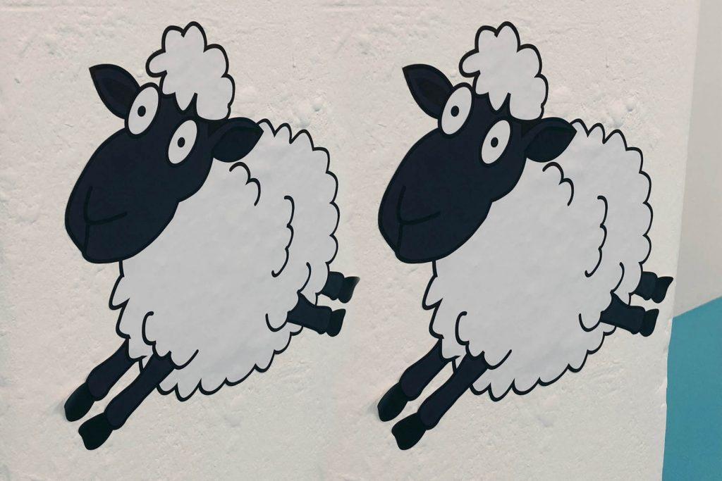 somnex-2018-exhibtion-count-the-sheep-kids-zone
